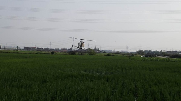 宁波市九龙湖9.6IMG_2022.JPG