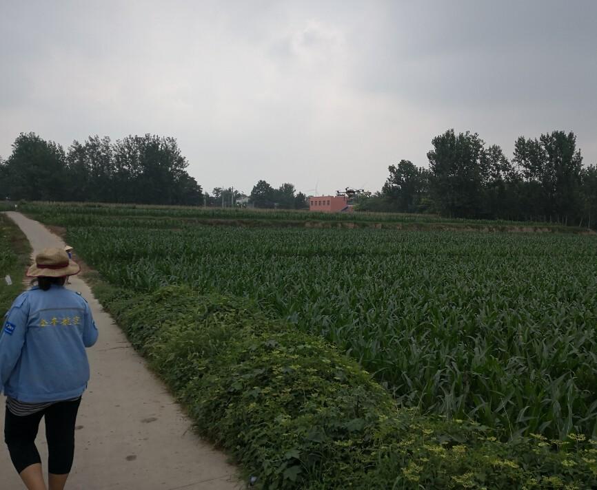 农用植保无人机施药